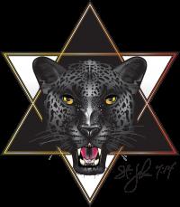 STJohn_logo2_d002-4.png