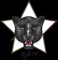 STJohn_logo2_d002-6.png